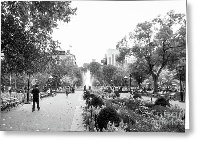 Greeting Card featuring the photograph A Walk In The Park by Ana V Ramirez