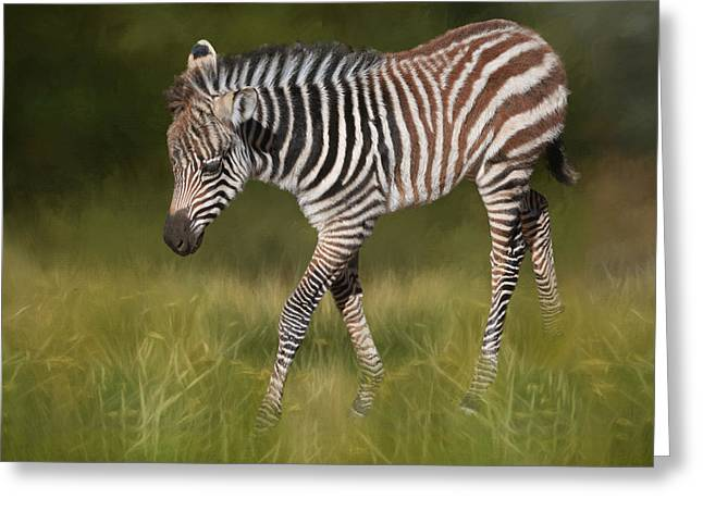 A Walk On The Wild Side Greeting Card