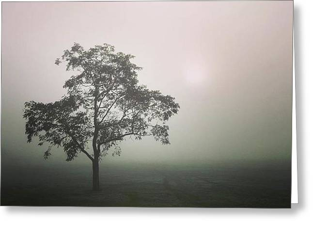 A Walk Through The Clouds #fog #nuneaton Greeting Card by John Edwards