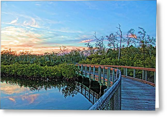 A Walk Through The Mangroves Greeting Card by HH Photography of Florida