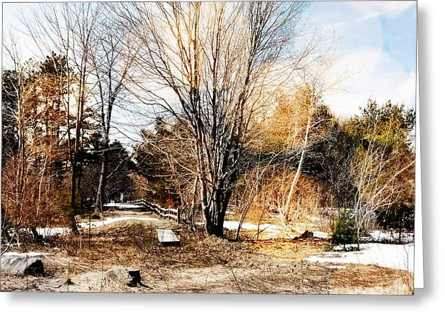 A Walk Through The Park Greeting Card by Marcia L Jones