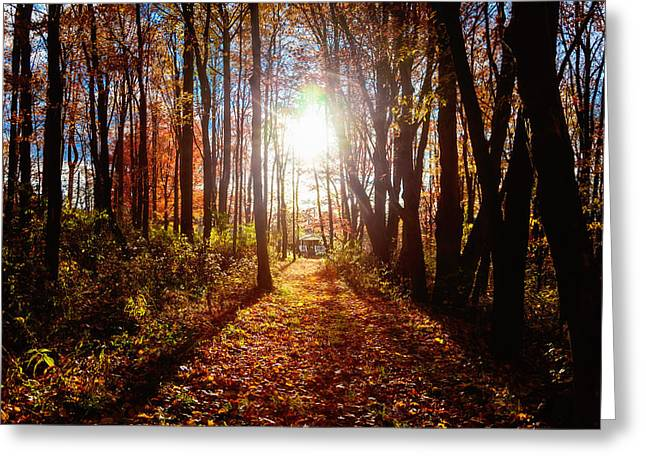 Greeting Card featuring the photograph A Walk To Grandma's by April Reppucci