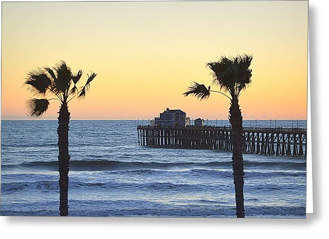 Greeting Card featuring the photograph A Warmer Place To Be by AJ Schibig