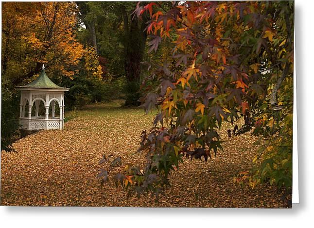 A Washington Crossing Autumn Greeting Card by Elsa Marie Santoro