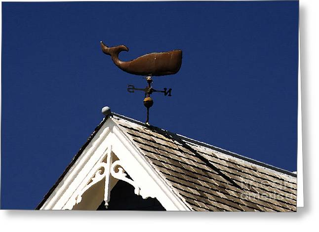 A Whale Of A House Greeting Card by David Lee Thompson