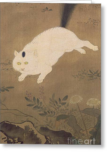 A White Cat Greeting Card