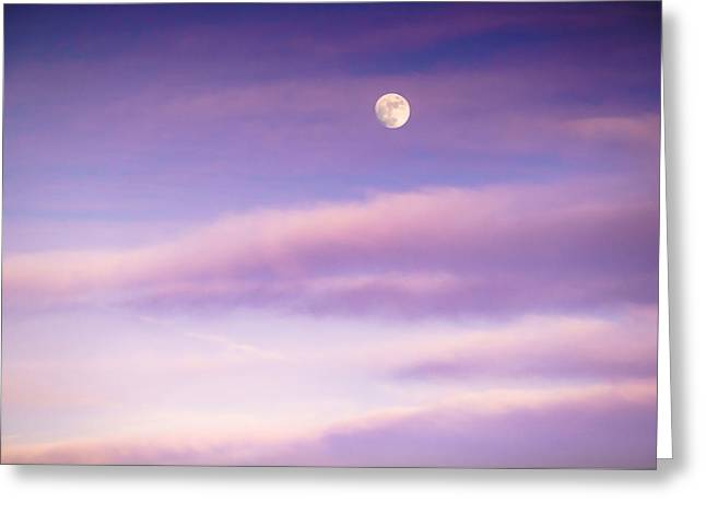 A White Moon In Twilight Greeting Card by Ellie Teramoto
