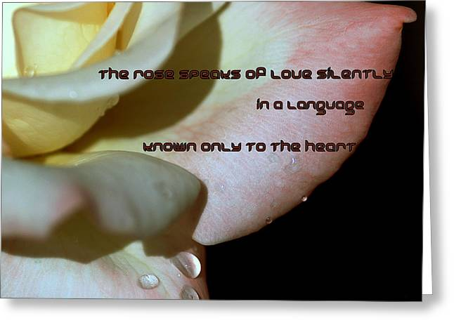 A White Rose Speaks Of Love Greeting Card