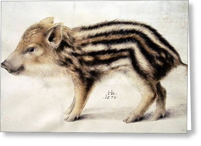 A Wild Boar Piglet Greeting Card