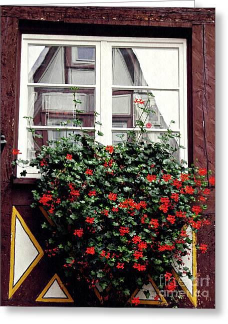 A Window In Mainz 4 Greeting Card