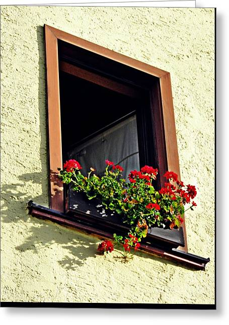 A Window In Schierstein 17 Greeting Card by Sarah Loft