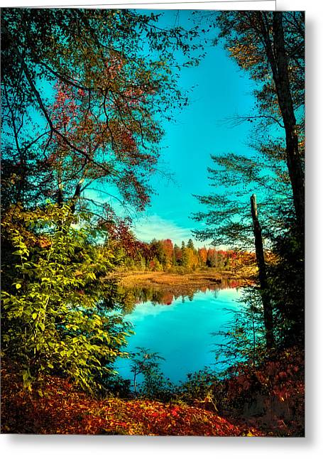 A Window Into Autumn Greeting Card