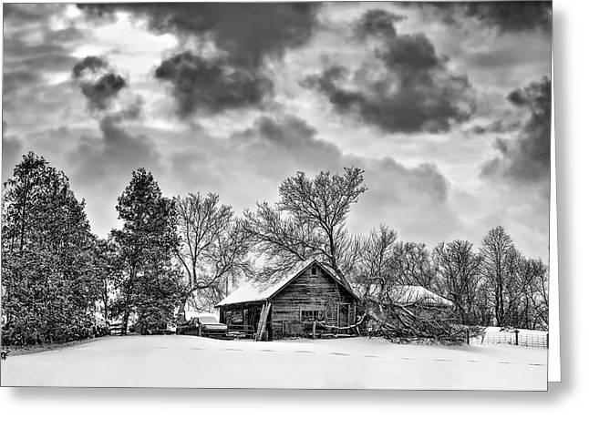 A Winter Sky Monochrome Greeting Card by Steve Harrington