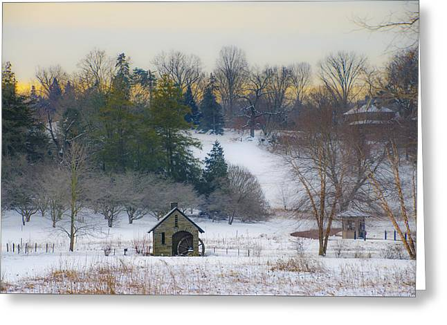 A Winters Day At Morris Arboretum Greeting Card by Bill Cannon