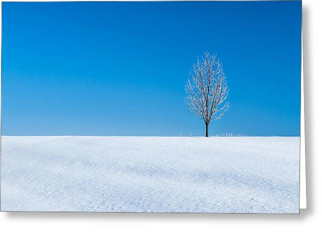 A Winter's Landmark Greeting Card