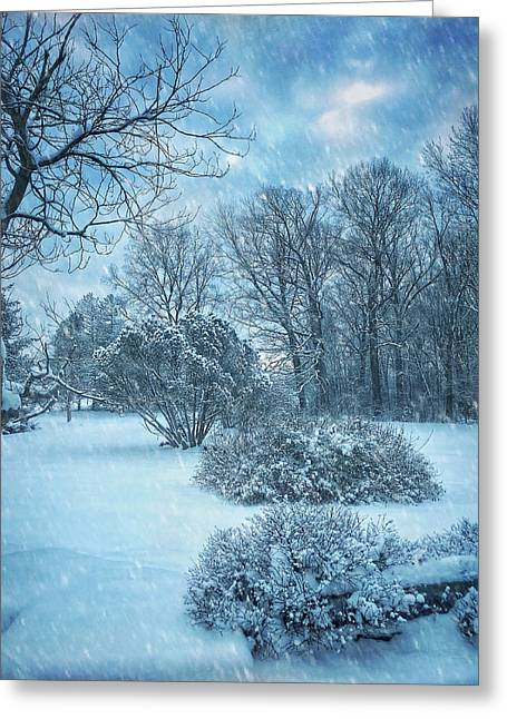 A Winters Tale Greeting Card