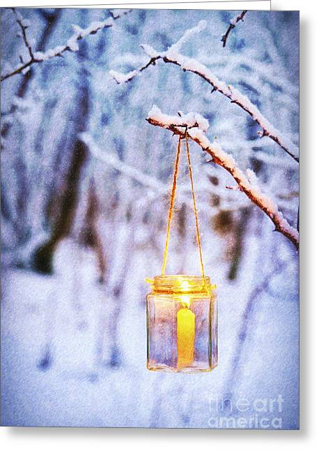A Winters Tale Greeting Card by Tim Gainey