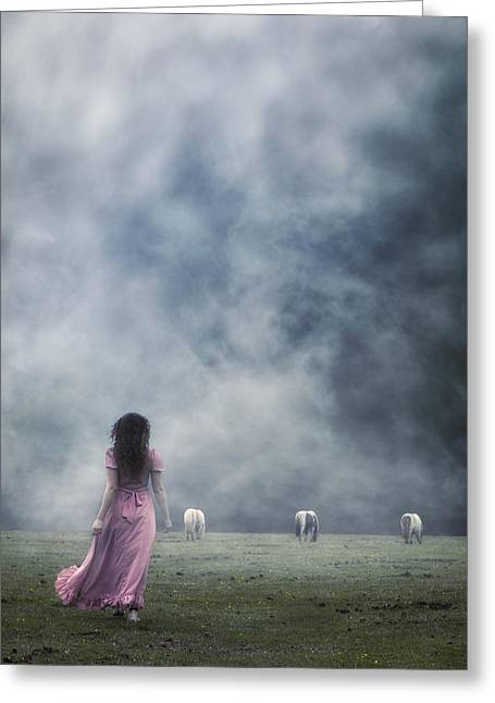 A Woman And Wild Ponies Greeting Card