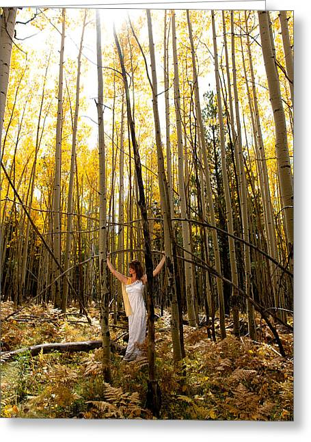 A Woman In The Aspen Greeting Card by Scott Sawyer
