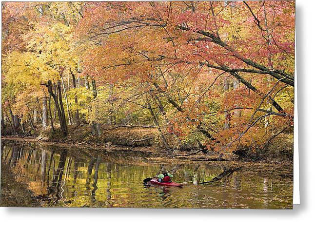 A Woman Kayaking Down The Chesapeake Greeting Card by Skip Brown