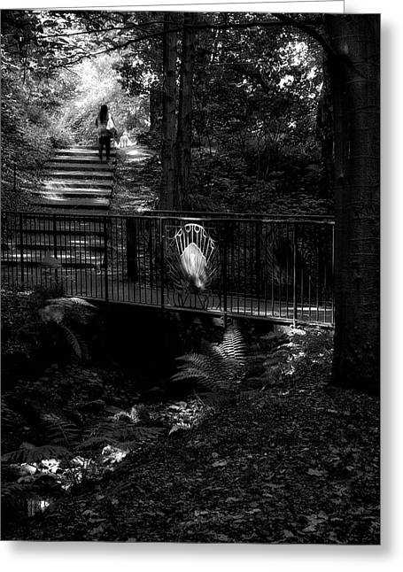 Greeting Card featuring the photograph A Woman Walking Her Dog At Pittencrieff Park by Jeremy Lavender Photography