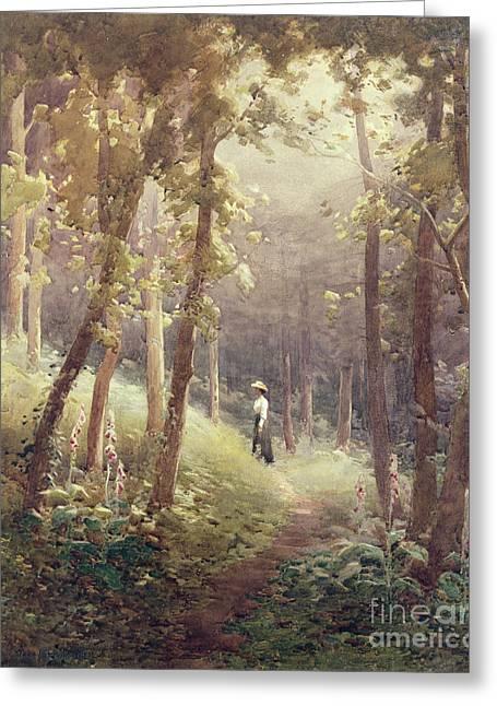 A Woodland Glade Greeting Card by John Farquharson