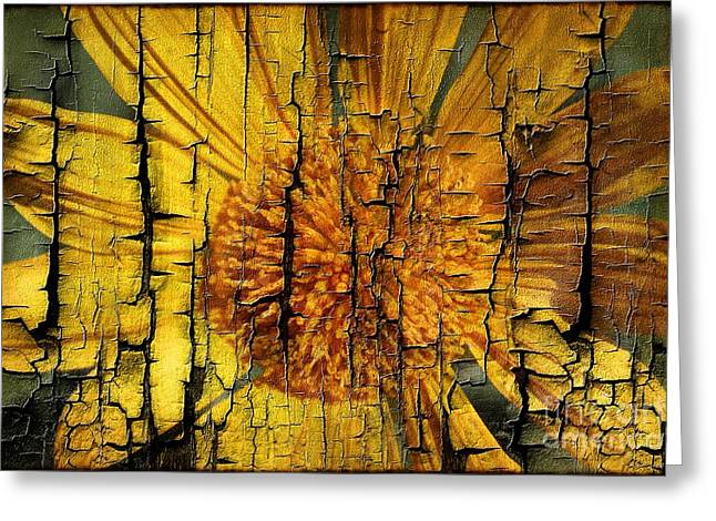 A Woody Texture Greeting Card by Clare Bevan