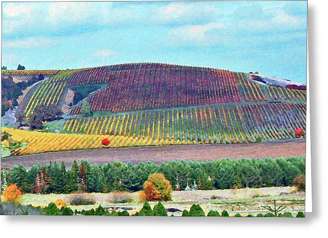 A Yamhill Co. Vineyard Greeting Card by Margaret Hood