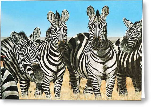 A Zeal Of Zebras Greeting Card