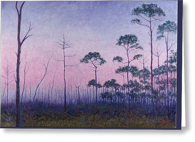 Abaco Pines At Dusk Greeting Card