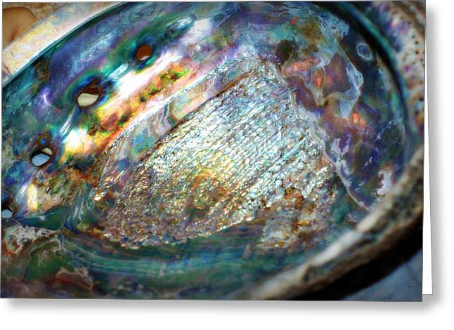 Abalone Greeting Card by Cricket Hackmann
