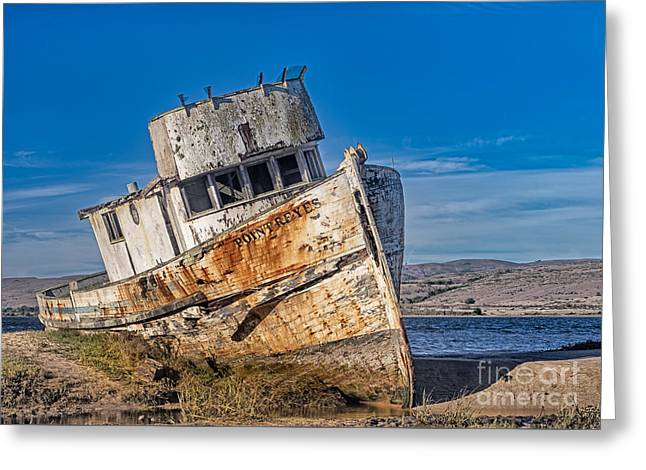 Abandon On Point Reyes Greeting Card by Jerry Fornarotto