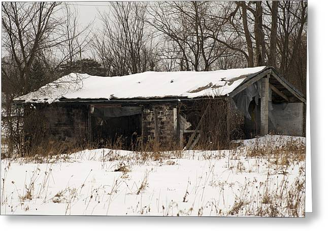 Abandoned And Cold Greeting Card by Elaine Mikkelstrup