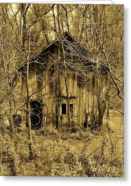 Abandoned Barn In Woods Greeting Card