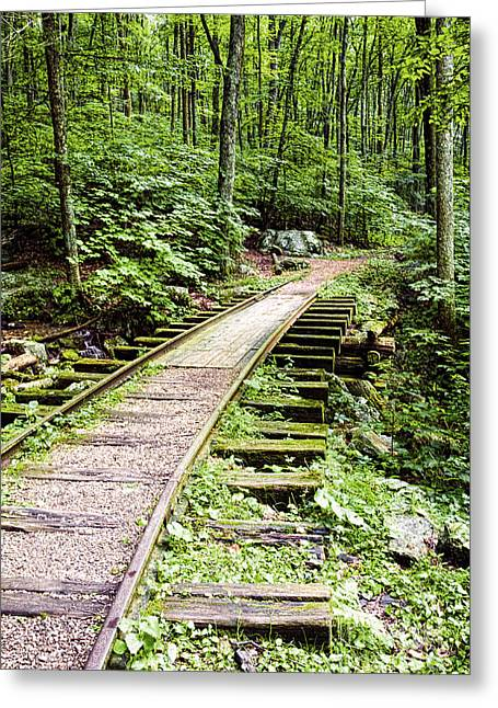 Abandoned Blue Ridge Track Greeting Card
