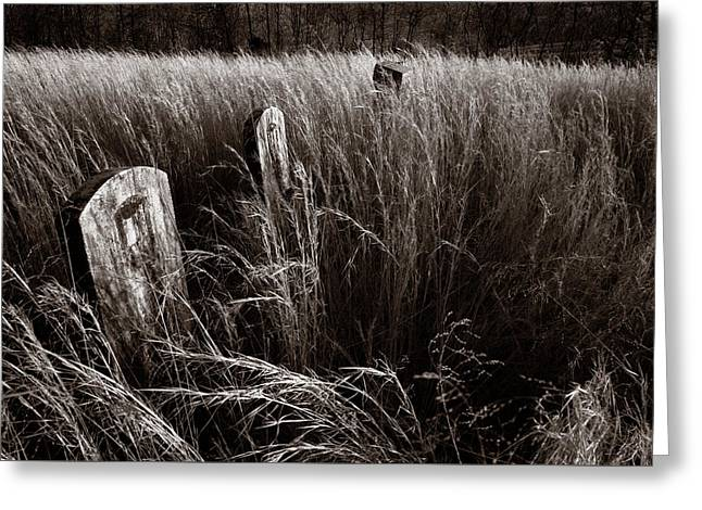Abandoned Cemetery Midwest Greeting Card by Steve Gadomski
