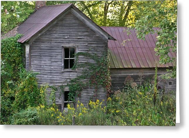 Abandoned Farmhouse On Stacy Fork Greeting Card by Douglas Barnett