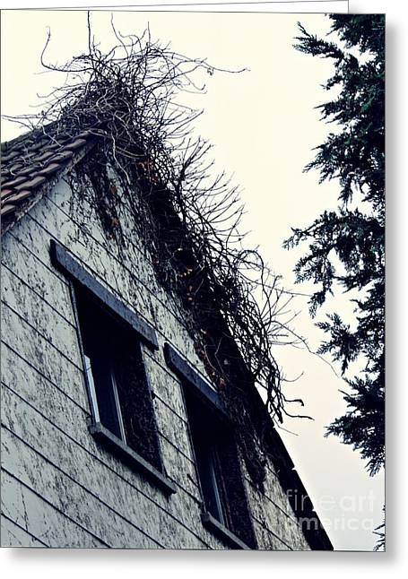 Abandoned House Greeting Card by Sarah Loft