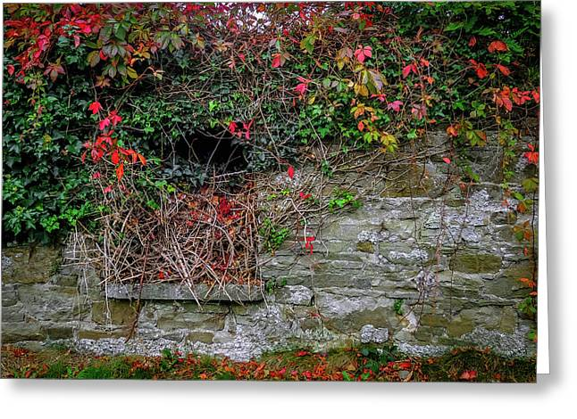 Greeting Card featuring the photograph Abandoned Irish Cottage In Autumn by James Truett