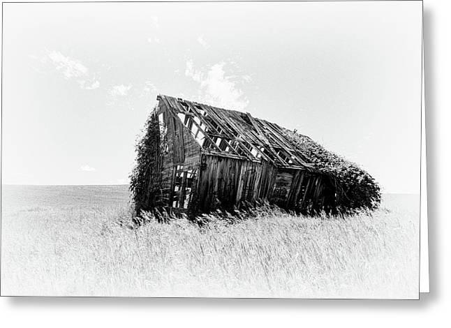Abandoned Cabin In Idaho Greeting Card