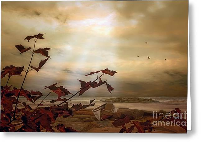 Abandoned On The Shore Greeting Card by Tom York Images