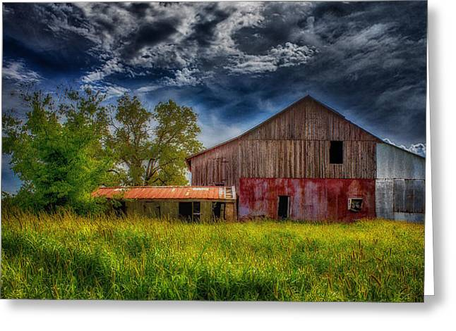 Abandoned Through The Reeds Greeting Card by Bill Tiepelman