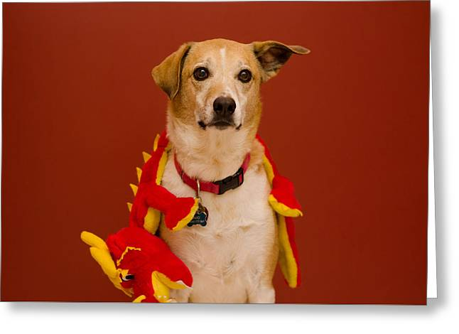 Greeting Card featuring the photograph Abbie And Dragon Toy by Irina ArchAngelSkaya