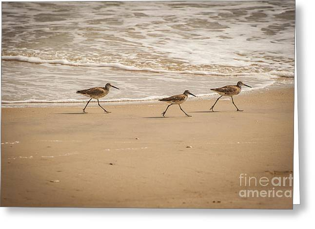 Outer Banks Obx Greeting Card