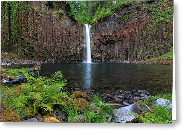 Abiqua Falls In Summer Greeting Card by David Gn