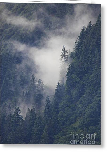 Above Juneau Greeting Card by Stan and Anne Foster