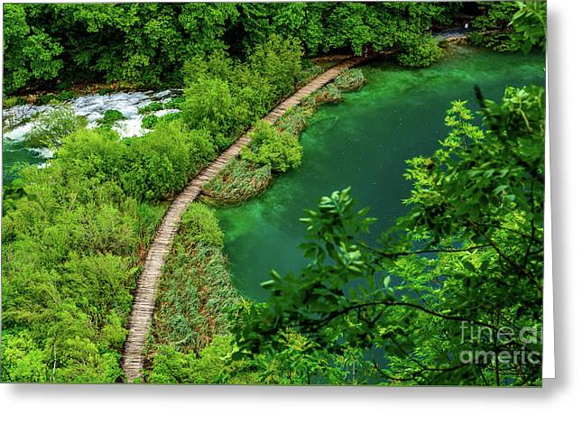 Above The Paths At Plitvice Lakes National Park, Croatia Greeting Card