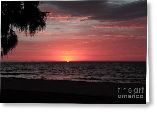 Abstract Beach Palm Tree Sunset Greeting Card