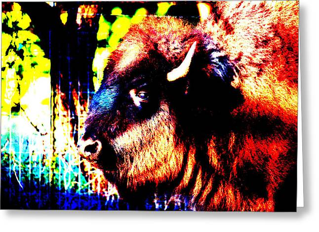 Neoichi Greeting Cards - Abstract Buffalo Greeting Card by Lon Casler Bixby