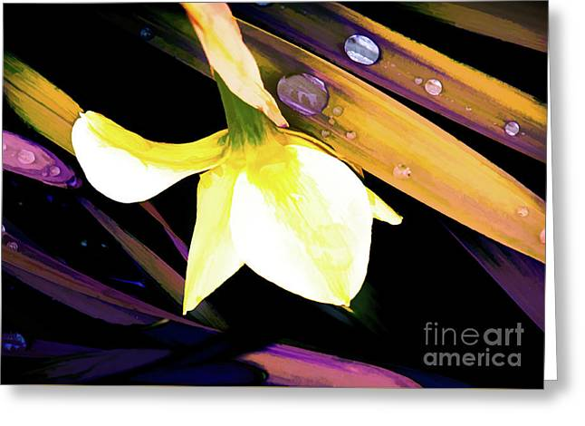 Abstract Daffodil And Droplets Greeting Card